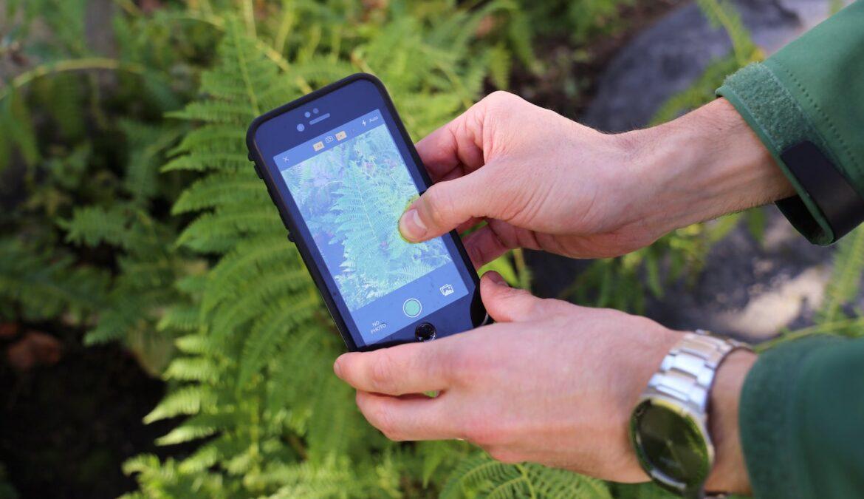 Первокурсников ЧГПУ ознакомили с приложением для любителей природы iNaturalist
