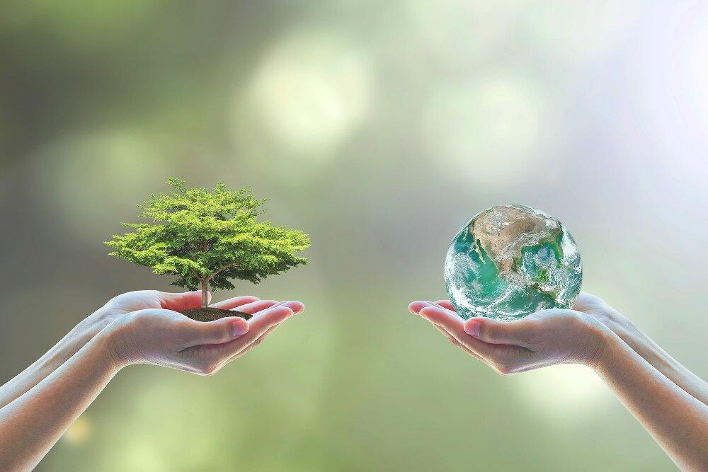 Интеллектуальная игра, посвященная Всемирному дню окружающей среды
